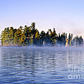 Island In Lake With Morning Fog by Elena Elisseeva