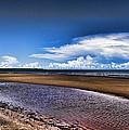 Isolated Beach  by Douglas Barnard