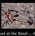It Happened At The Beach by Christine Stonebridge