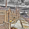Italian Village-sydney Harbor Bridge by Douglas Barnard
