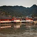 Itsukushima Shrine On Miyajima Island by Ei Katsumata