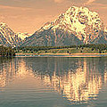 Jackson Lake Reflection by Sandra Bronstein