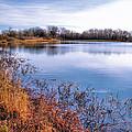 January Bass Pond 2 2012 by Joyce Dickens