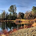 January Bass Pond 2012 by Joyce Dickens