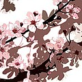 Japanese Blossom  by Sarah O Toole