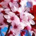 Japanese Flower by Steve K