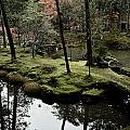 Japanese Garden At Saihoji Temple by Sam Abell