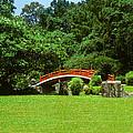 Japanese Garden Bridge 21m by Gerry Gantt