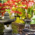 Japanese Garden by Kati Finell