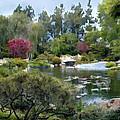 Japanese Garden Panorama 1 by Elaine Plesser