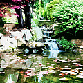 Japanese Garden by Phill Petrovic