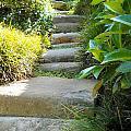 Japanese Garden Stone Steps by Lynnette Johns