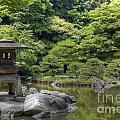 Japanese Garden by Tad Kanazaki