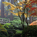 Japanese Gardens Fall by Wes and Dotty Weber