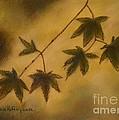 Japanese Maple Leaves by Julie Brugh Riffey