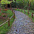 Japanese Tea Garden Path by Garry Gay