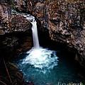 Jasper - Beauty Creek Falls by Terry Elniski