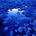 Jasper - Blue Boulders by Terry Elniski