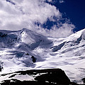 Jasper - Mt. Athabasca  by Terry Elniski