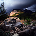 Jasper - Summer Storm by Terry Elniski