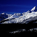 Jasper National Park In Winter Time by Terry Elniski