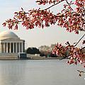Jefferson Memorial by Joe Myeress