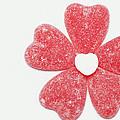 Jelly Candy Heart Flower 1 by John Brueske