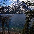 Jenny Lake In The Grand Teton Area by Susanne Van Hulst