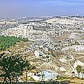 Jerusalem Panorama by Daniel Blatt