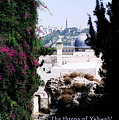 Jerusalem Throne Of Yahweh by Constance Woods