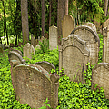 Jewish Town Tombs In The Jewish Cemetery by Maremagnum