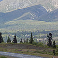 Jogger On The Glenn Highway And Chugach by Rich Reid