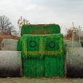 John Deer Made Of Hay by LeeAnn McLaneGoetz McLaneGoetzStudioLLCcom