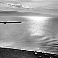 Jordan: Dead Sea, 1961 by Granger