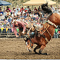 Jordan Valley Arena Action Ranch Bronc 2012 by Mary Williams Hyde