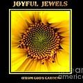 Joyful Jewels Book