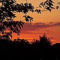 June Sunset by Tammy Ishmael - Eizman