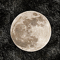 Just A Little Ole Super Moon by Andee Design