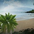 Ka Makani Olu Olu  -  Polo Beach Maui Hawaii by Sharon Mau
