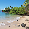 Kahana Beach by Paulette B Wright