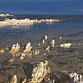 Kaikoura Coast by Peter Mooyman