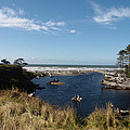 Kalaloch by Michael Merry