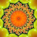 Kaleidoscope IIi by Richard Ortolano