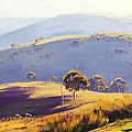 Kanimbla Valley by Graham Gercken
