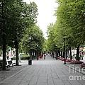Karl Johans Gate by Carol Groenen