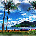 Kauai Beach And Palms by Joan  Minchak