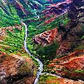 Kauai River Canyon by Artistic Photos