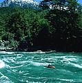 Kayaker Surfing Terminator Rapid Waves by Skip Brown