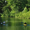 Kayakers Paddle In The Headwaters by Raymond Gehman