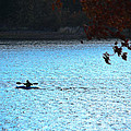 Kayaking  by Kim Henderson